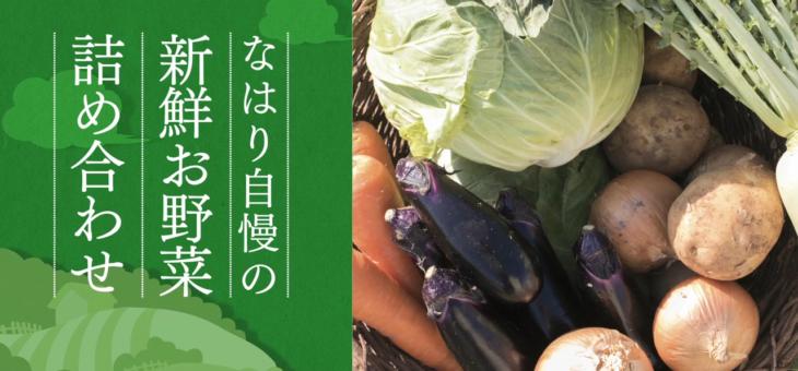 奈半利で獲れる、ふくよかでみずみずしい野菜を届けたい
