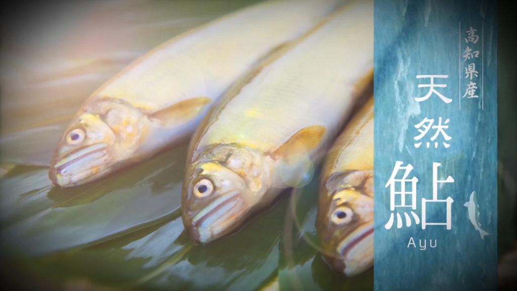 奈半利天然鮎PR0591