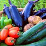 収穫量日本一!なすの産地がおすすめする、なすレシピ3選